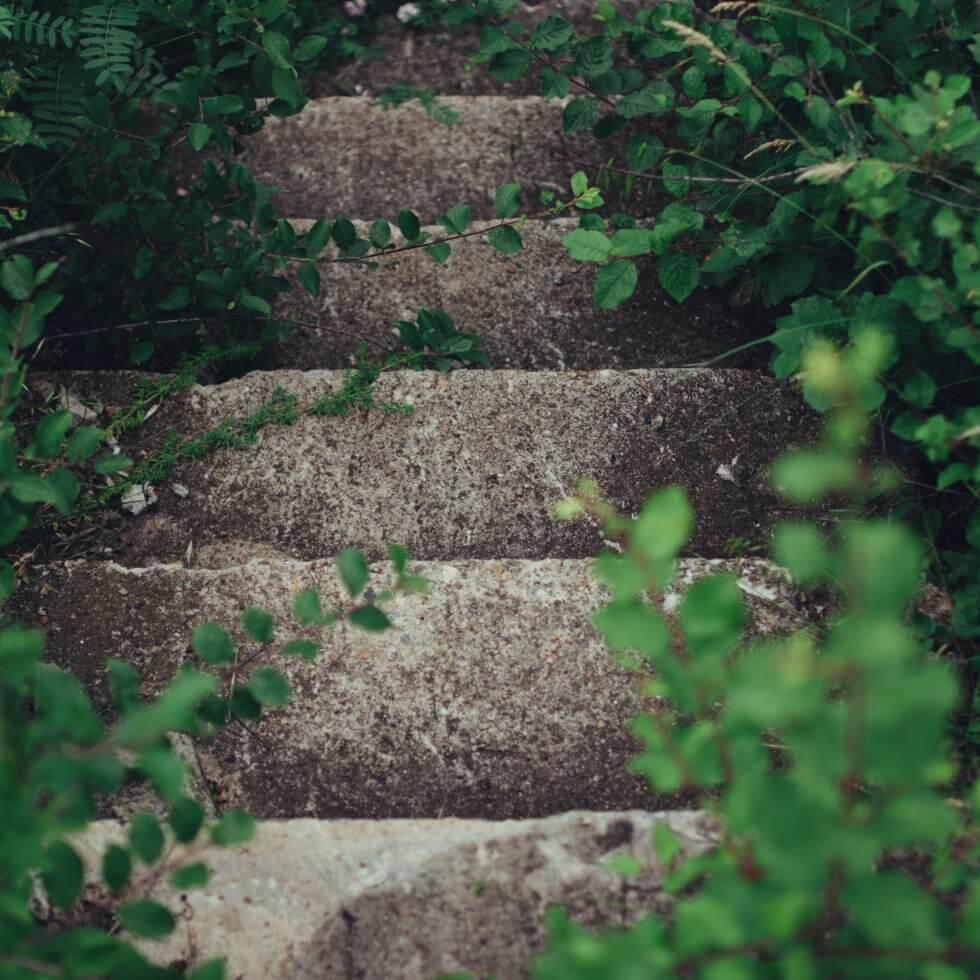 amur-i-gurgulicata-maya.bg-old-garden-stairs